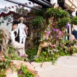 Massimo Dutti's store decorated with plants and foliage for the Chelsea Fringe festival. — Stock Photo #26661935