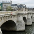 Paris Bridge — Stock Photo #21024719