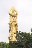 Guanyin Buda — Fotografia Stock