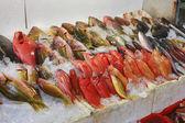 いくつかの凍結の魚 — ストック写真