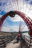 The Picturesque Bridge — Stock Photo