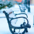 Benches in the park covered with snow — Stock Photo #12855460