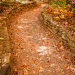 Stock Photo: Let's go for walk on leafy path