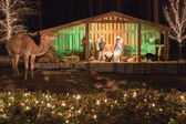 Christmas live nativity set — Stock Photo