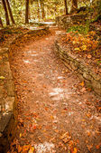 Let's go for a walk on a leafy path — Stock Photo