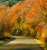Fall highway — Stock Photo #13408945