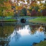 Countryside landscape with beautiful little lake. — Stock Photo #13554470