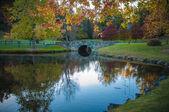 пейзаж загородной местности с красивым маленькое озеро. — Стоковое фото