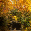 Stock Photo: Blue ridge parkway tunnel