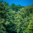 Stock Photo: Blue ridge mountains tunnel