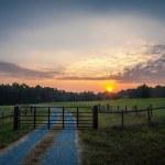 Country farm road — Stock Photo #14041348