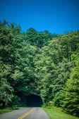 Blue ridge mountains tunnel — Stock Photo