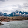 Rocky Mountains by the Yellowstone River — Stock Photo #14051291