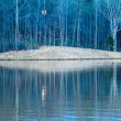 Stock Photo: Moon reflecting in lake