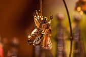 Angel suspended decoration — Stock Photo