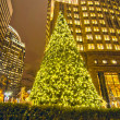 Christmas tree in charlotte city — Stock Photo