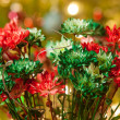 Stock Photo: Colored daisy flowers with christmas lights in back