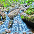 Mountain streams — Stock Photo