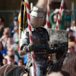 Stock Photo: Armored joust knight