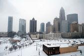 Horizonte de charlotte en la nieve — Foto de Stock