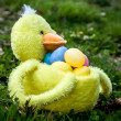 Easter duck basket — Stock Photo