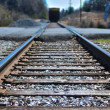Rail Road Tracks — Stock Photo #22799136