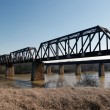 Railroad bridge over river — Stock Photo #22999954