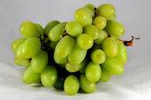 Филиал зеленого винограда, изолированные на белом фоне — Стоковое фото