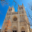 National cathedral washington dc - april 5, 2013 - Stock Photo
