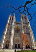 Catedral nacional de washington dc - 5 de abril de 2013 — Foto Stock