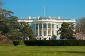 The white house washington dc — Stock Photo