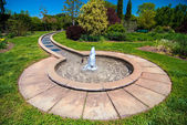 Fountain in botanical garden — Stock Photo
