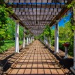 Garden Lattice walkway with stone pavers and vine flowers throug - Stok fotoğraf
