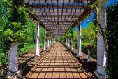 Garden Lattice walkway with stone pavers and vine flowers throug — Stock Photo
