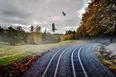 Foggy nature along the train tracks — Stock Photo