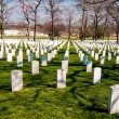 At arlington cemetary — Stock Photo