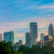 Uptown Charlotte, North Carolina Cityscape — Stock Photo