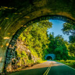 Twin tunnel — Stock Photo #26910387