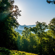 Blue ridge parkway early morning — Stock Photo #26910725
