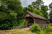 Vieux pont de bois couvert en alabama — Photo