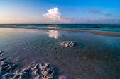 Scéna beach florida — Stock fotografie