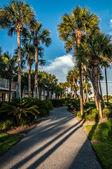 Scena della spiaggia in florida — Foto Stock