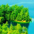 Stock Photo: Birds eye view of lake jocassee landscapes