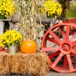 pumpkins next to an old farm tractor — Stock Photo #33725641