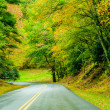 Stock Photo: Blue Ridge Parkway in Fall after Rain