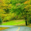 Blue Ridge Parkway in Fall after Rain — Stock Photo #33727871