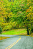 Blue Ridge Parkway in the Fall after a Rain — Stock Photo