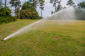 Watering green grass lawn on golf course — Stock Photo