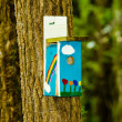 Stock fotografie: Bird house with rainbow colors