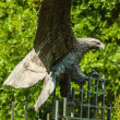 Golden eagle in flight statue — Stock Photo